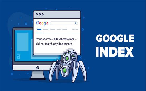 Những lí do website không được Google Index